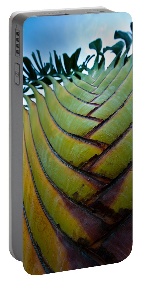 Los Cabos Portable Battery Charger featuring the photograph To The Sky by Sebastian Musial