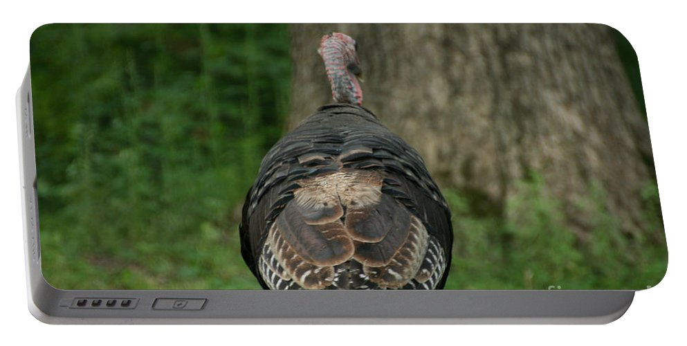 Turkey Portable Battery Charger featuring the photograph Toddling by Susan Herber