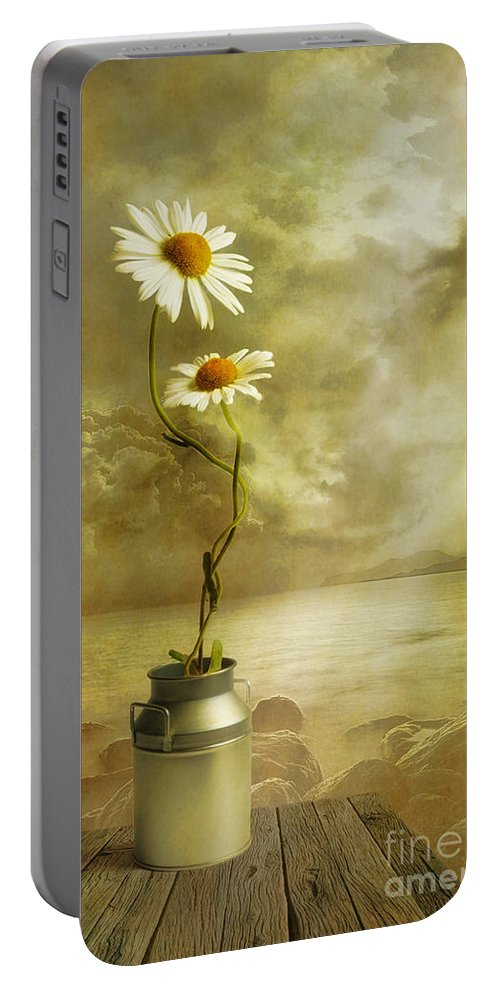 Art Portable Battery Charger featuring the photograph Together by Veikko Suikkanen
