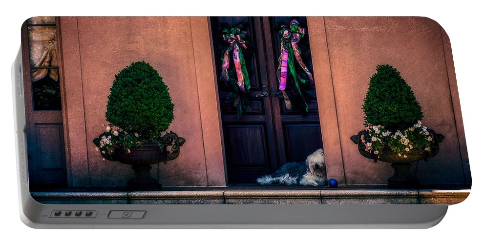 Nawlins Portable Battery Charger featuring the photograph Too Hot To Fetch by Melinda Ledsome