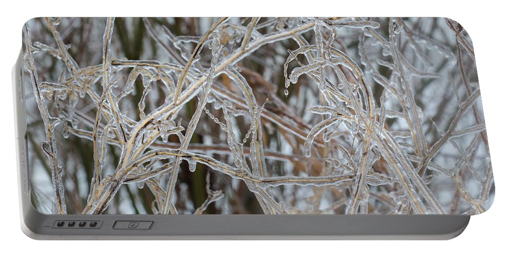 Toronto Ice Storm 2013 Portable Battery Charger featuring the photograph Toronto Ice Storm 2013 - Pale Frozen Grasses by Georgia Mizuleva