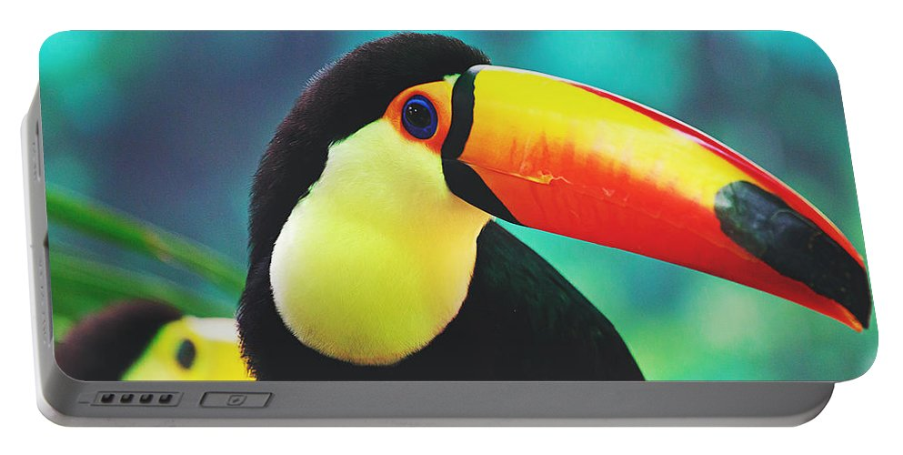 Toucan Portable Battery Charger featuring the photograph Toucan by Pati Photography