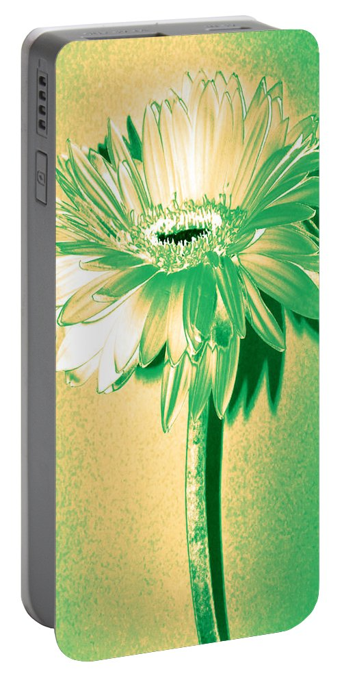 Original Photo Portable Battery Charger featuring the photograph Touch Of Turquoise Zinnia by Sherry Allen