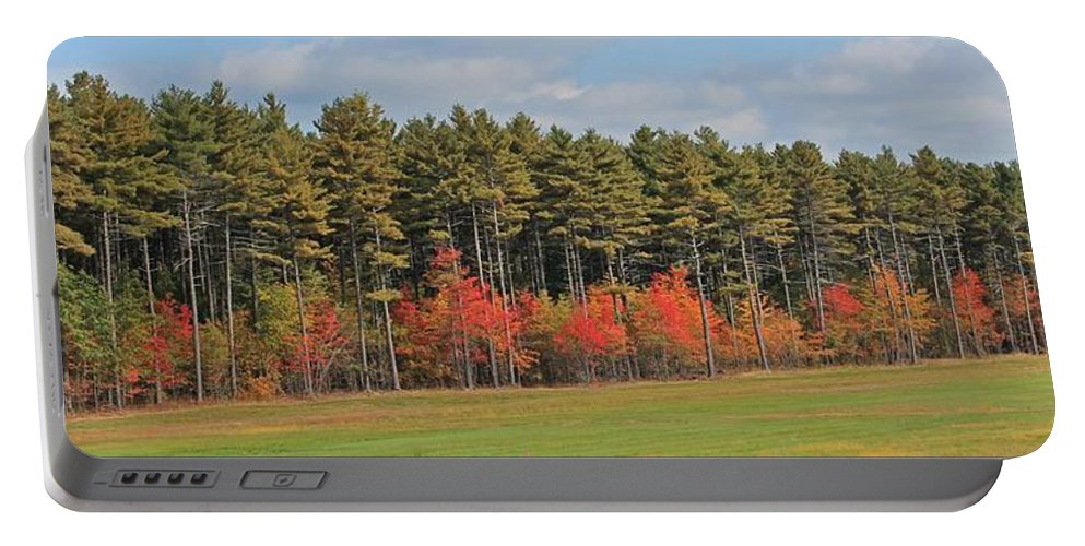 Trees Portable Battery Charger featuring the photograph Towering Evergreens by Michael Saunders