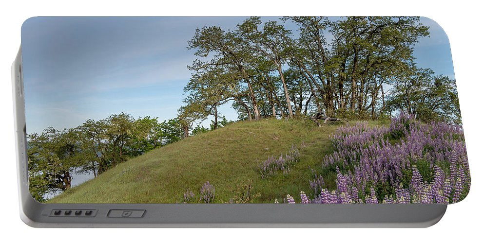 Lupine Portable Battery Charger featuring the photograph Trail Of Lupine by Greg Nyquist