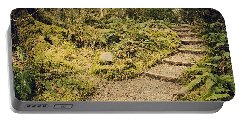 Hall Of Mosses Portable Battery Charger featuring the photograph Trail Through The Moss by Heather Applegate