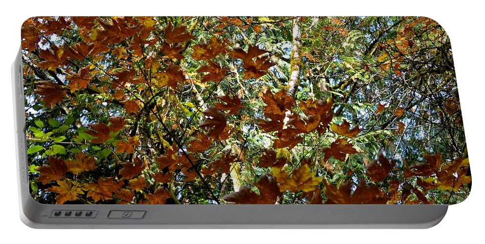 Nature Portable Battery Charger featuring the photograph Transition 2 by Stephanie Bland