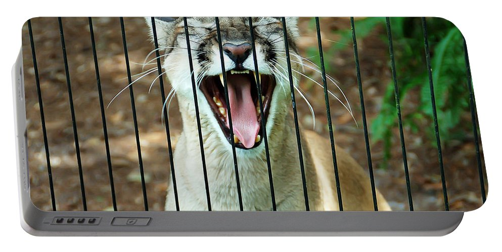 Panther Portable Battery Charger featuring the photograph Trapped In A Cage by Aimee L Maher ALM GALLERY