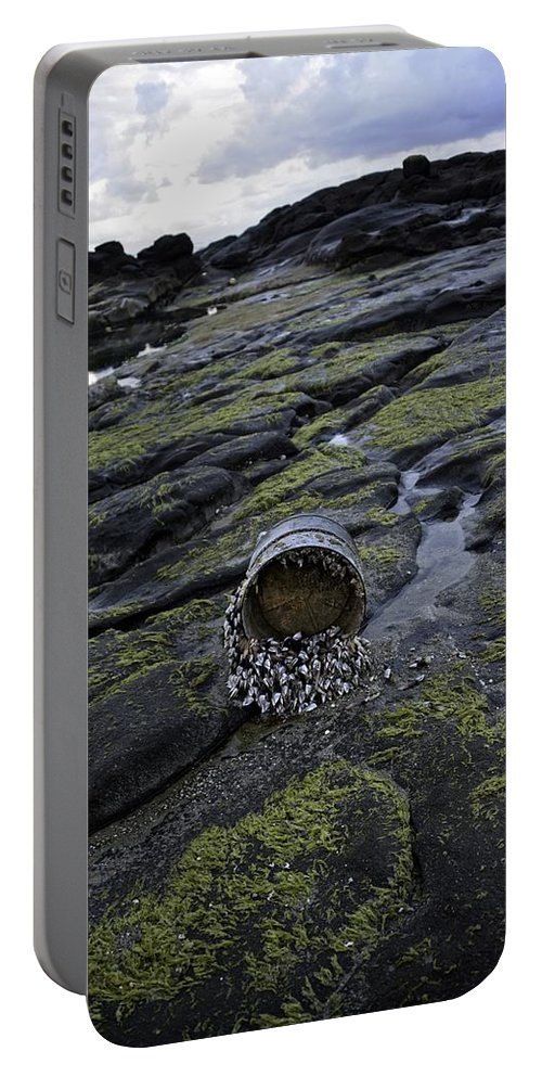 Yachats Portable Battery Charger featuring the photograph Treasures From The Ocean by Image Takers Photography LLC - Carol Haddon