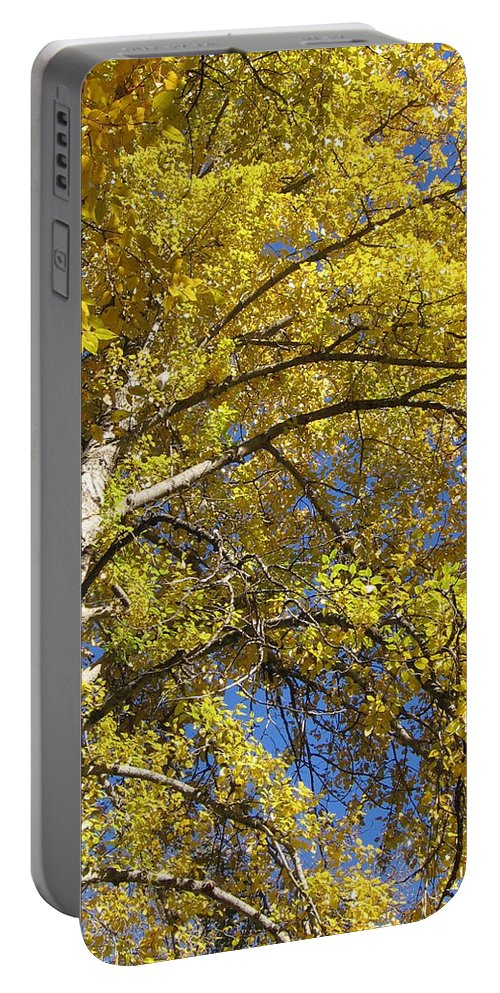 Yellow Tree Portable Battery Charger featuring the photograph Tree 4 by Kimberly Maxwell Grantier