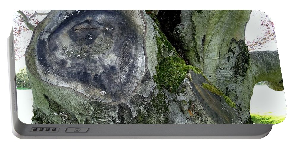 Tree Portable Battery Charger featuring the photograph Tree Abstract by Ed Weidman