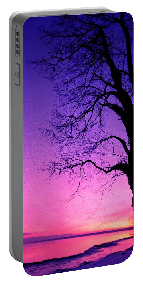 Lake Ontario Portable Battery Charger featuring the photograph Tree At Sunrise by Tracy Winter