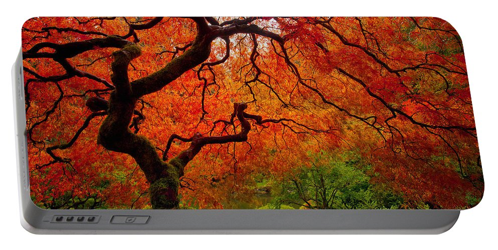 Portland Portable Battery Charger featuring the photograph Tree Fire by Darren White