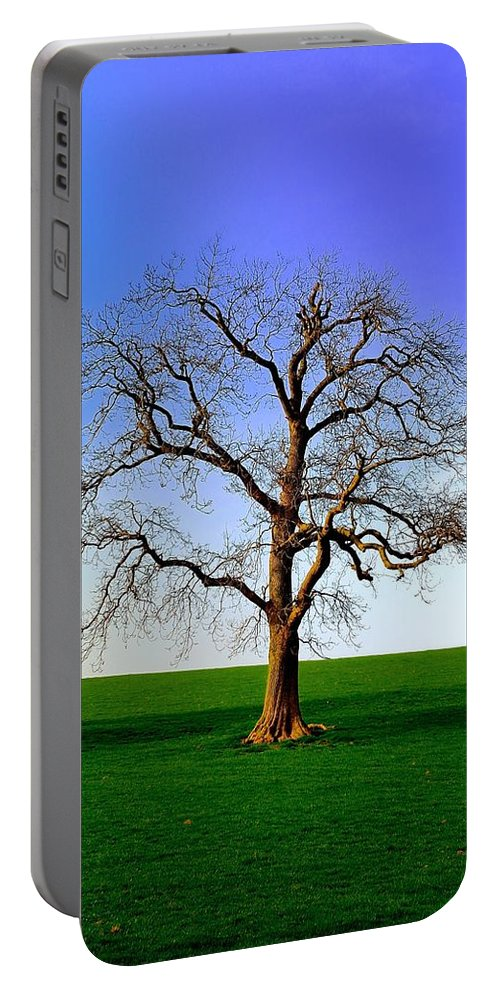 Clearing Portable Battery Charger featuring the photograph Tree by FL collection
