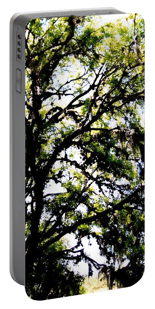 Tree Portable Battery Charger featuring the photograph Tree In Blue Ridge Mountains by Glenn Aker