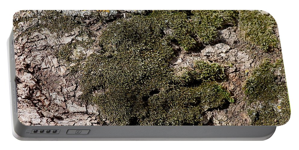 Moss Portable Battery Charger featuring the photograph Tree Moss by Wayne Williams