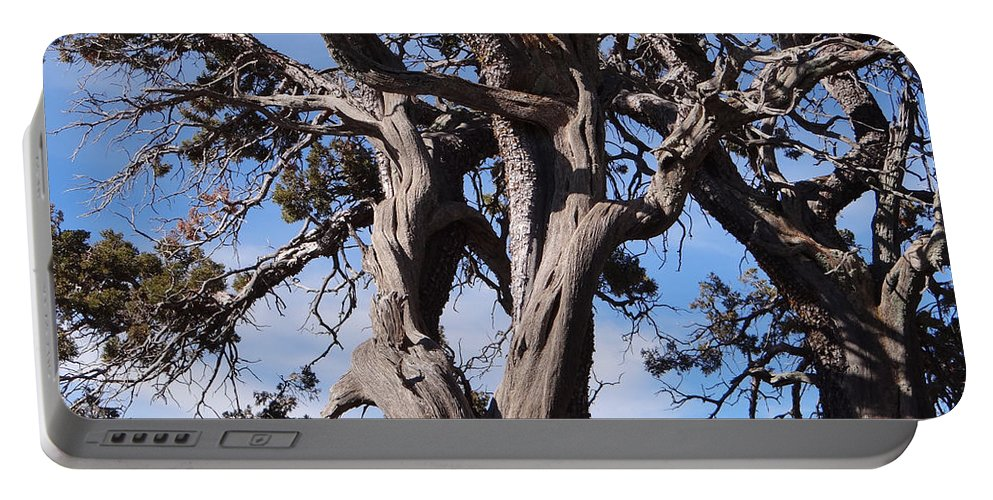 Tree Portable Battery Charger featuring the photograph Tree Of Hope by Jamie Ramirez