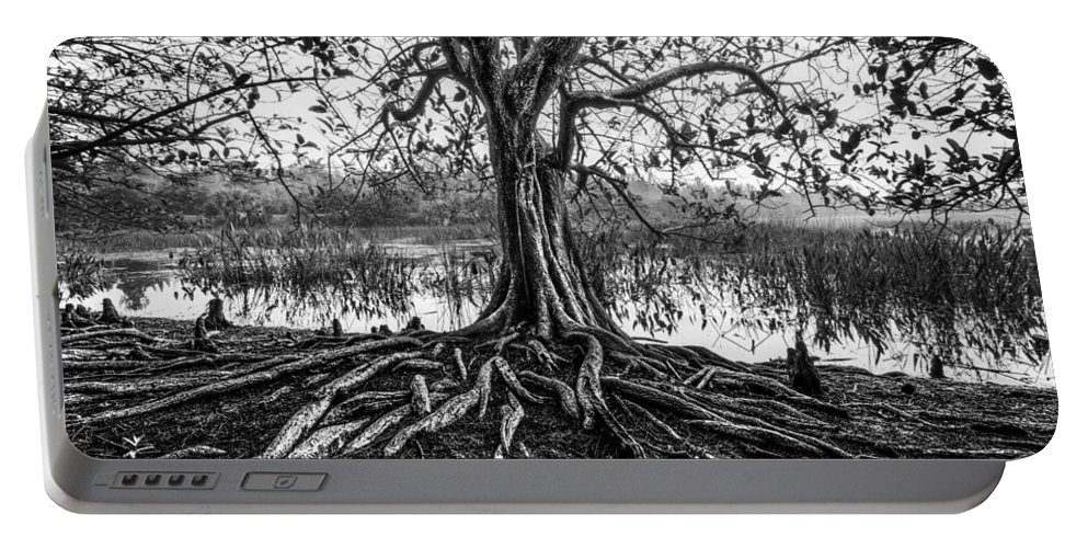 Clouds Portable Battery Charger featuring the photograph Tree Of Life by Debra and Dave Vanderlaan