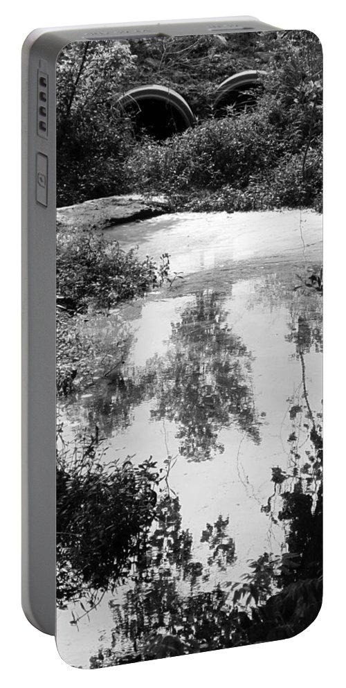 Water Portable Battery Charger featuring the photograph Tree Reflections by Michele Nelson