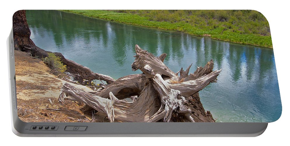 Tree Stump Portable Battery Charger featuring the photograph Tree Stump In Des Chutes Nf-or by Ruth Hager