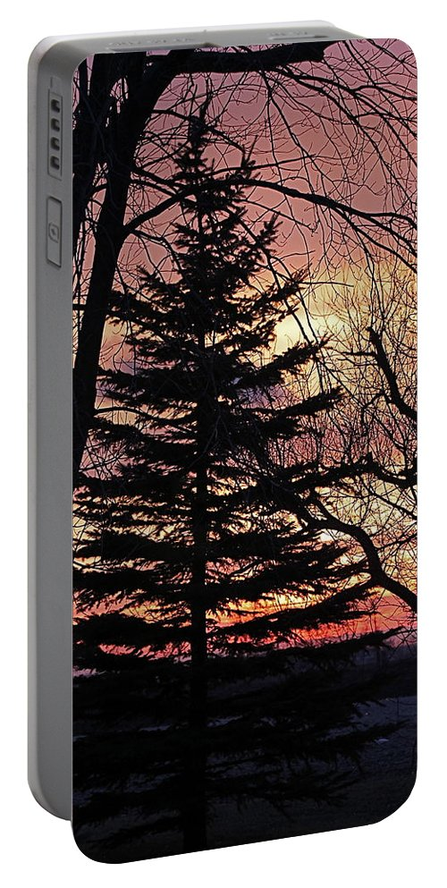 Trees Portable Battery Charger featuring the photograph Tree Sunset by Wayne Williams