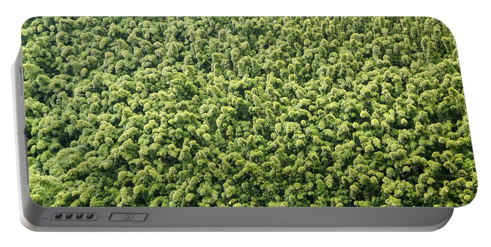 Tree Trees Treetop Treetops Road To Hana Maui Hawaii Portable Battery Charger featuring the photograph Tree Tops by Bob Phillips