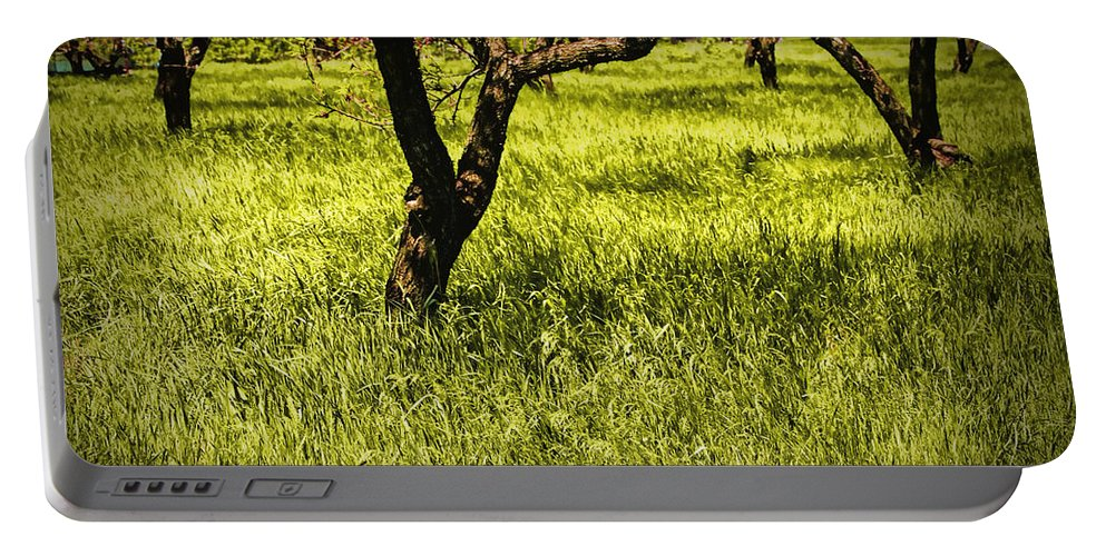 Art Portable Battery Charger featuring the photograph Tree Trunks In A Peach Orchard by Randall Nyhof