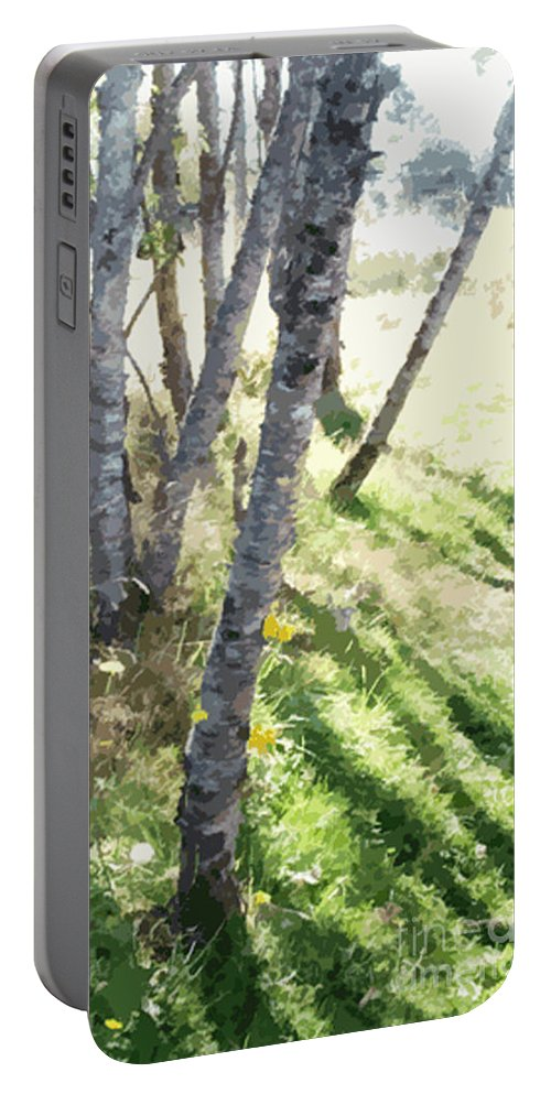 Shadow Portable Battery Charger featuring the photograph Trees At A Picnic by Flamingo Graphix John Ellis