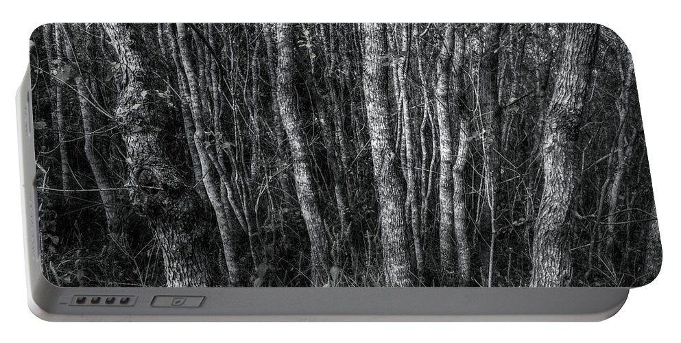 Trees Portable Battery Charger featuring the digital art Trees In Black And White by Linda Unger