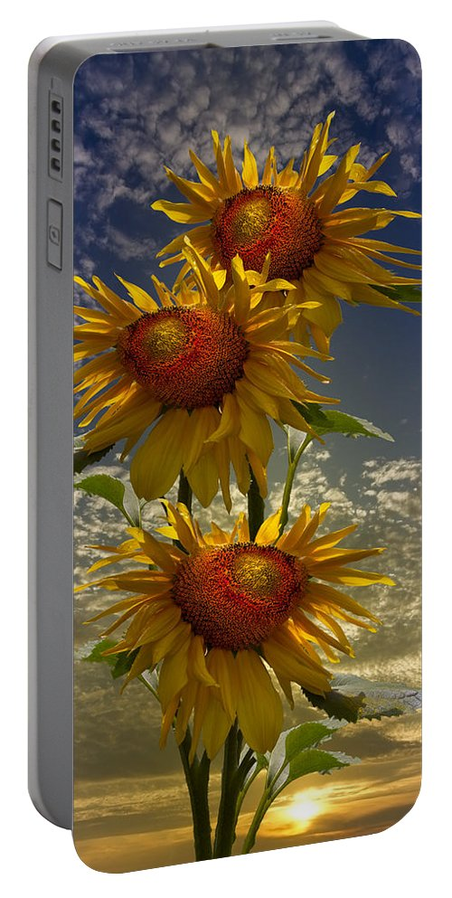 Austria Portable Battery Charger featuring the photograph Trio Of Sunflowers by Debra and Dave Vanderlaan