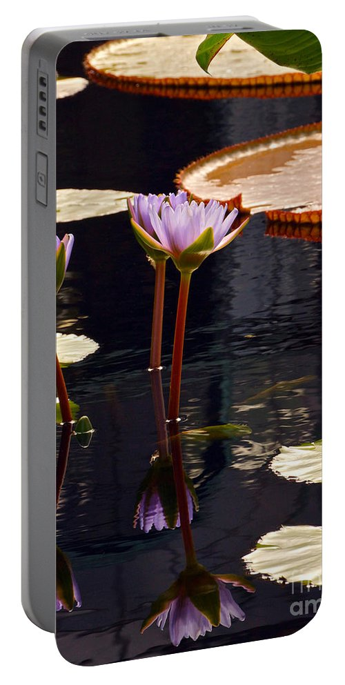 Tropical Waterlilies And Pads In Dark Water Portable Battery Charger featuring the photograph Tropical Waters Floral Charm -- Version 2 by Byron Varvarigos