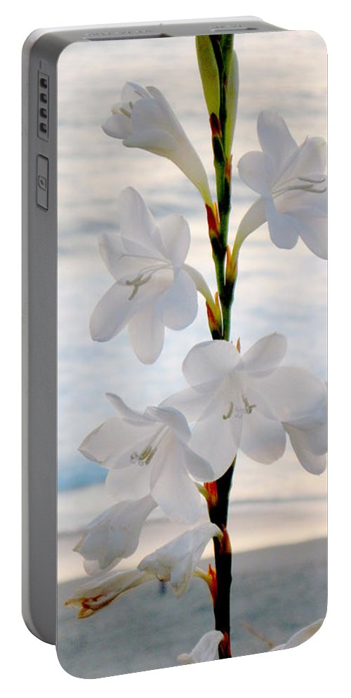 Flower Portable Battery Charger featuring the photograph White Trumpet-shaped Flowers At Dana Point Beach California by Conni Schaftenaar
