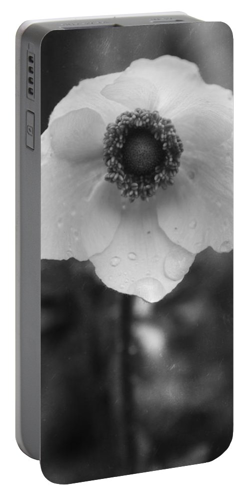 Flower Portable Battery Charger featuring the photograph Trust In Rain by The Artist Project