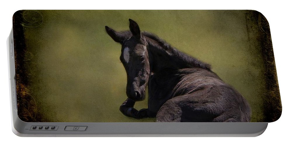 Animal Portable Battery Charger featuring the photograph Tuckered Out by Davandra Cribbie