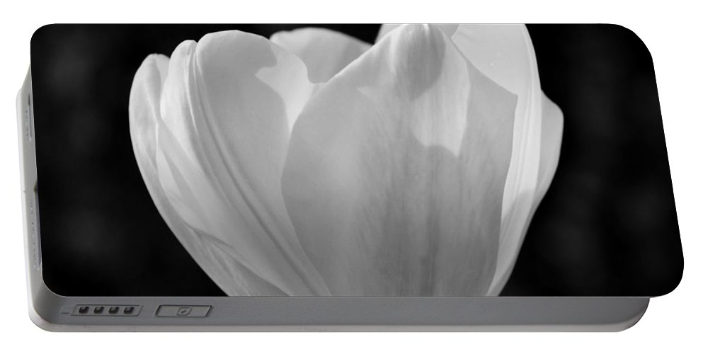 Tulip Bw Portable Battery Charger featuring the photograph Tulip Bw by Maria Urso