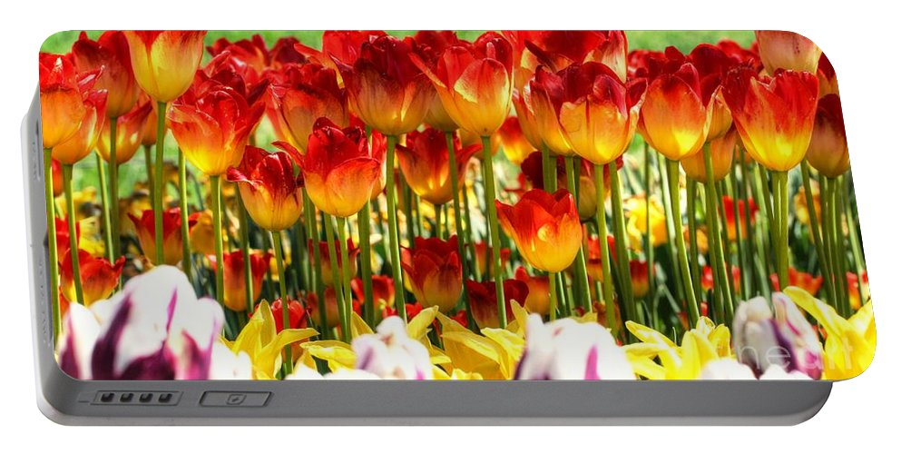 Tulip Portable Battery Charger featuring the photograph Tulip Stand In Mount Vernon Washington by Tap On Photo