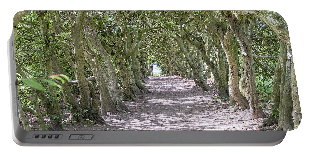Tunnel Portable Battery Charger featuring the photograph Tunnel Of Trees by Antony McAulay