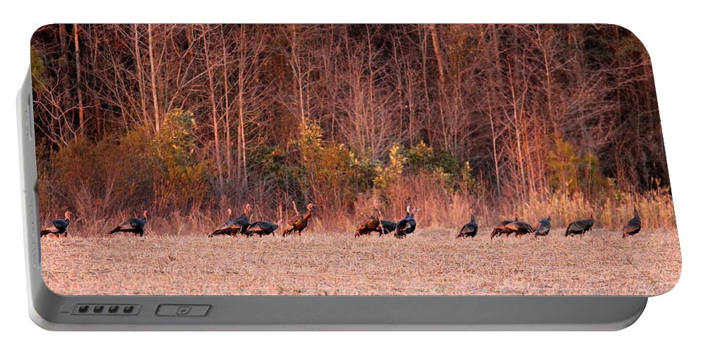 Longbeards Portable Battery Charger featuring the photograph 8964 - Turkey - Eastern Wild Turkey by Travis Truelove
