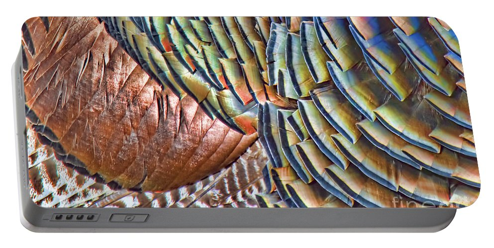 Turkey Portable Battery Charger featuring the photograph Turkey Feather Colors by Gary Beeler
