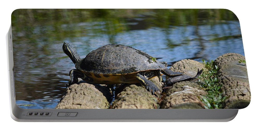 River Portable Battery Charger featuring the photograph Turtle Float by Linda Kerkau
