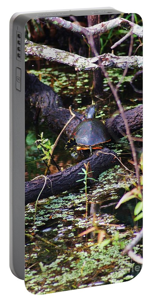 Turtle Portable Battery Charger featuring the photograph Turtle In The Glades by Chuck Hicks