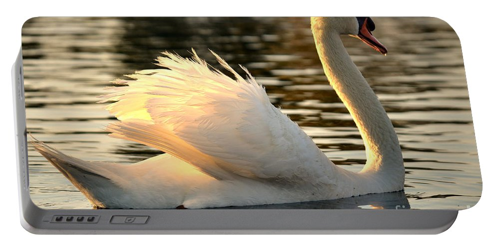 White Swan Portable Battery Charger featuring the photograph Twilight Swim by Deb Halloran