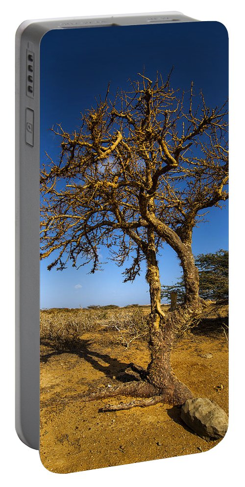 Nature Portable Battery Charger featuring the photograph Twisted Tree by Jess Kraft