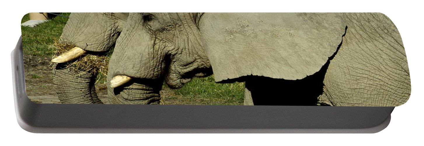 Two Portable Battery Charger featuring the photograph Two By Two by Frozen in Time Fine Art Photography