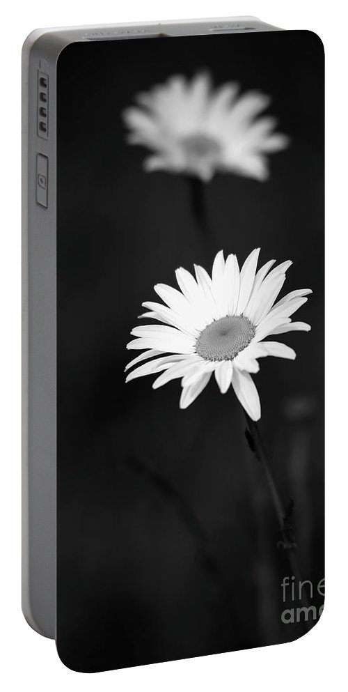 Art Portable Battery Charger featuring the photograph Two Daisies by Sabrina L Ryan