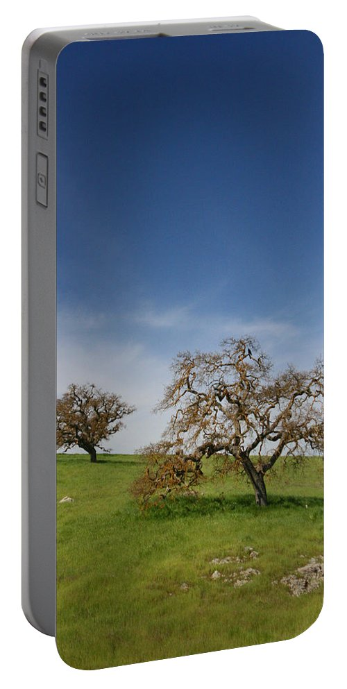 Trees Portable Battery Charger featuring the photograph Two by Dayne Reast