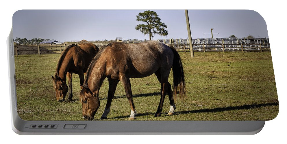 Horses Portable Battery Charger featuring the photograph Two Horses by Fran Gallogly