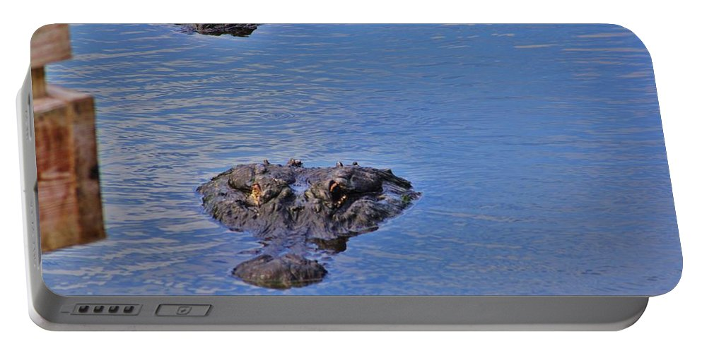 Gators Portable Battery Charger featuring the photograph Two Hunting by Chuck Hicks