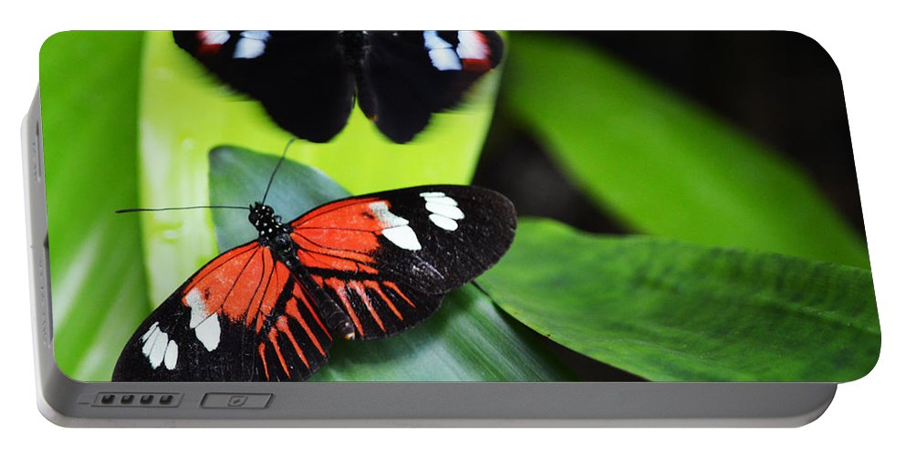 Small Postman Portable Battery Charger featuring the photograph Two In The Leaves by Linda Kerkau