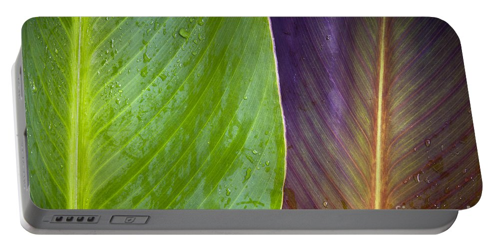 Background Portable Battery Charger featuring the photograph Two Leaves by Tim Hester